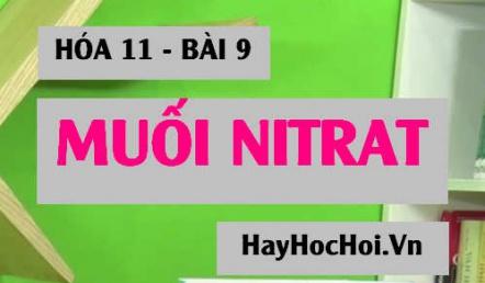 Tính chất hóa học của Muối Nitrat và Bài tập vận dụng - Hóa 11 bài 9